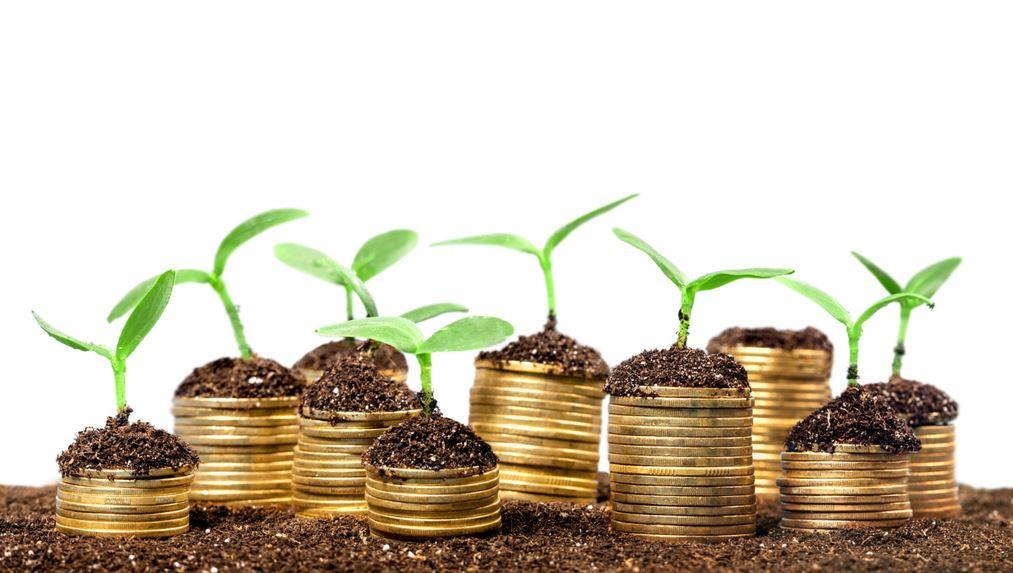 Drie krachtige redenen om in meerdere domeinnamen te investeren.